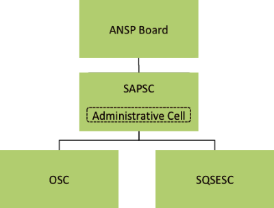 Strategy and Planning Standing Committee (SAPSC)